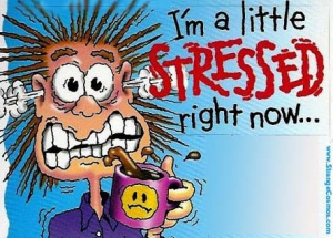 Do You Have Stress Or Does Stress Have You?